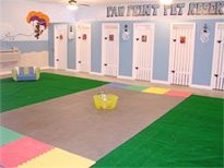 Indoor Pet Play Room